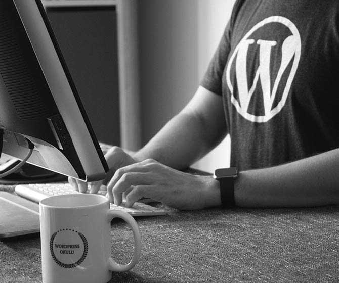 Utilisateur - Agence CMS WordPress